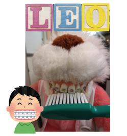 LEO brace.png