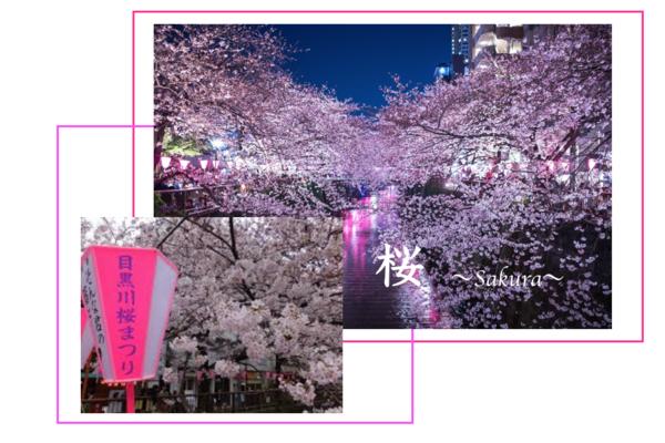 スクリーンショット 2019-04-12 15.57.21.png