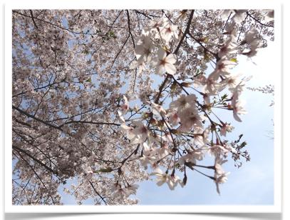 スクリーンショット(2012-04-14 8.42.52).png