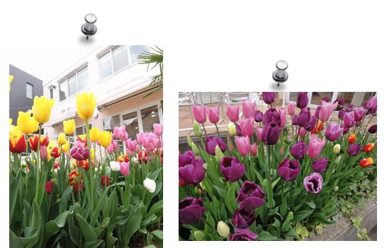 スクリーンショット(2012-04-24 14.53.55).png